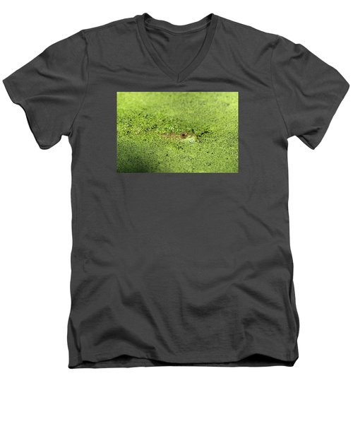 Green Frog Stony Brook New York Men's V-Neck T-Shirt