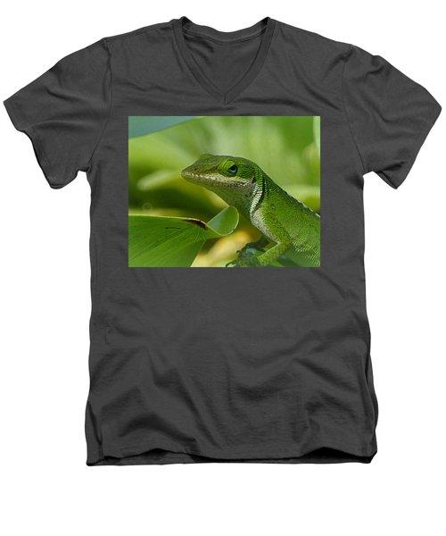 Green Gecko On Green Leaves Men's V-Neck T-Shirt
