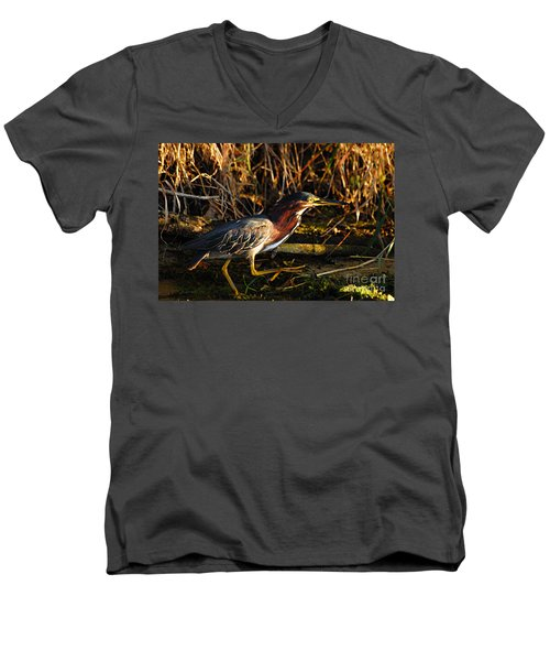 Men's V-Neck T-Shirt featuring the photograph Green Heron by Larry Ricker