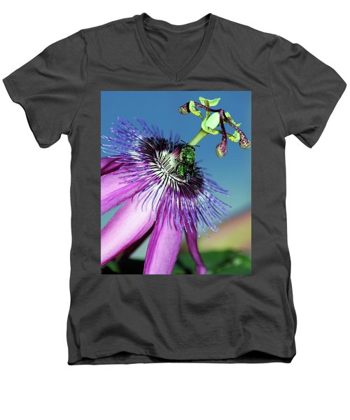 Green Hover Fly On Passion Flower Men's V-Neck T-Shirt