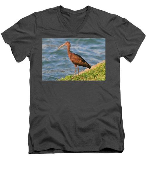 Green Ibis 4 Men's V-Neck T-Shirt