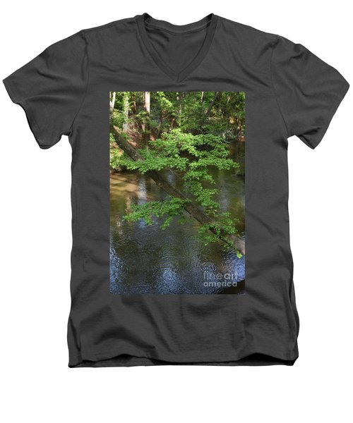 Men's V-Neck T-Shirt featuring the photograph Green Is For Spring by Skip Willits