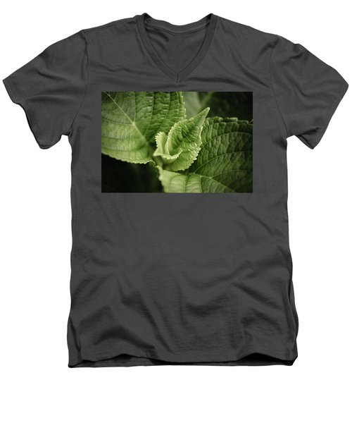 Men's V-Neck T-Shirt featuring the photograph Green Leaves Abstract II by Marco Oliveira
