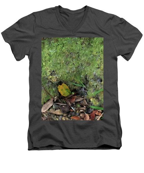 Green Man Spirit Photo Men's V-Neck T-Shirt