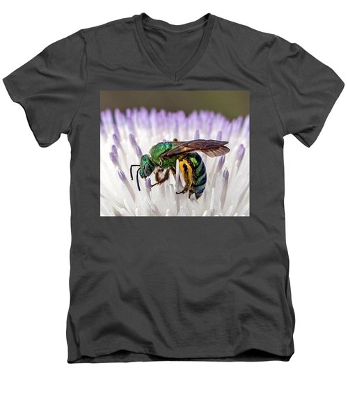 Green Orchid Bee Men's V-Neck T-Shirt
