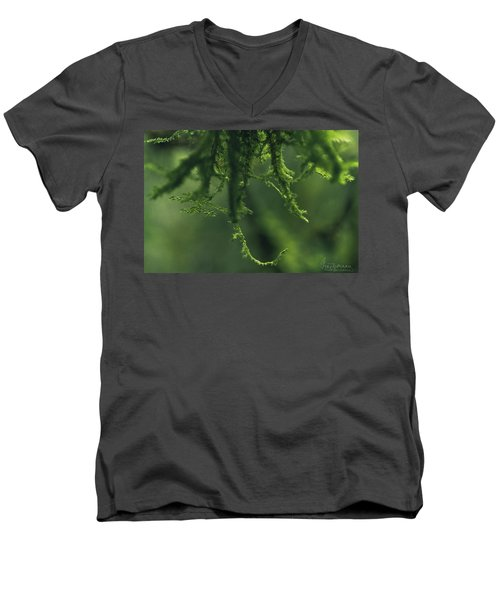 Flavorofthemonth Men's V-Neck T-Shirt
