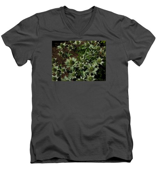 Green Thistles In Botanical Garden Of Bern Men's V-Neck T-Shirt