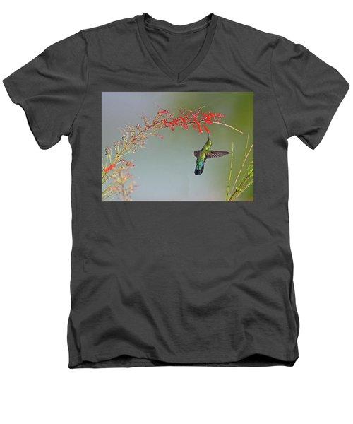 Green-throated Carib Men's V-Neck T-Shirt
