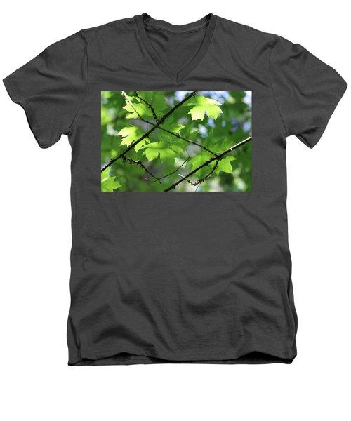 Greenleaves Men's V-Neck T-Shirt