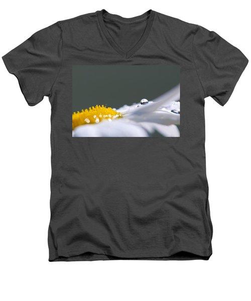 Grey And Yellow Daisy Men's V-Neck T-Shirt