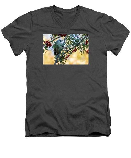 Men's V-Neck T-Shirt featuring the photograph Grey Headed Woodpecker Female by Jivko Nakev