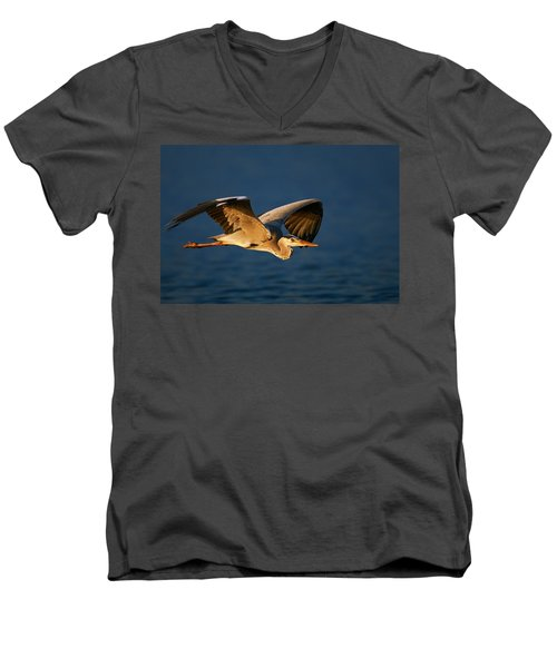 Grey Heron In Flight Men's V-Neck T-Shirt