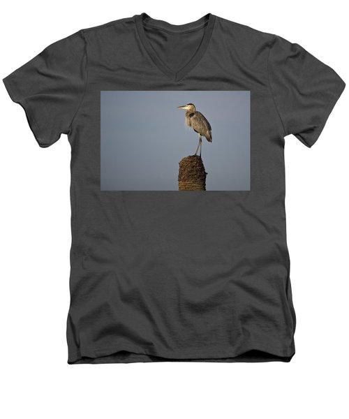 Grey Heron Men's V-Neck T-Shirt