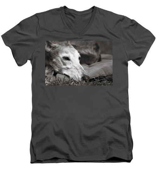 Greyful Men's V-Neck T-Shirt by Angela Rath