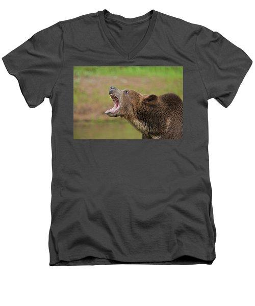 Grizzly Bear Growl Men's V-Neck T-Shirt