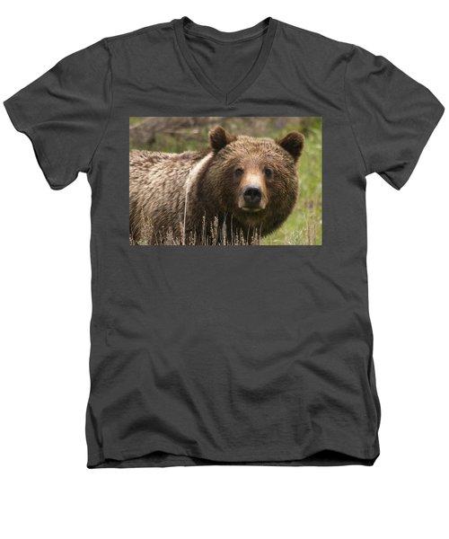 Grizzly Portrait Men's V-Neck T-Shirt