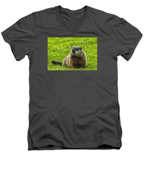 Ground Hog Men's V-Neck T-Shirt