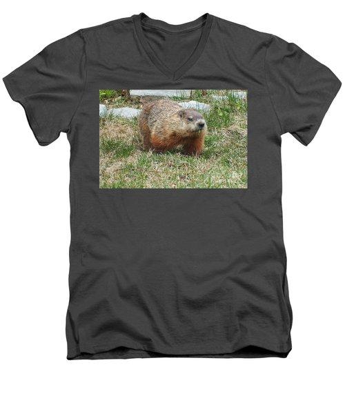 Groundhog Men's V-Neck T-Shirt by Vicky Tarcau