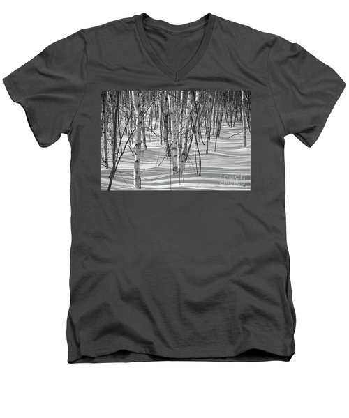 Group Of White Birches Men's V-Neck T-Shirt