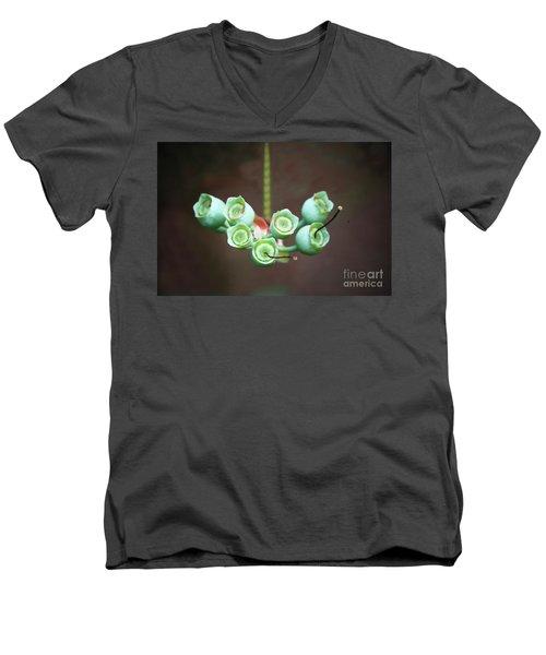 Growing Blueberries Men's V-Neck T-Shirt