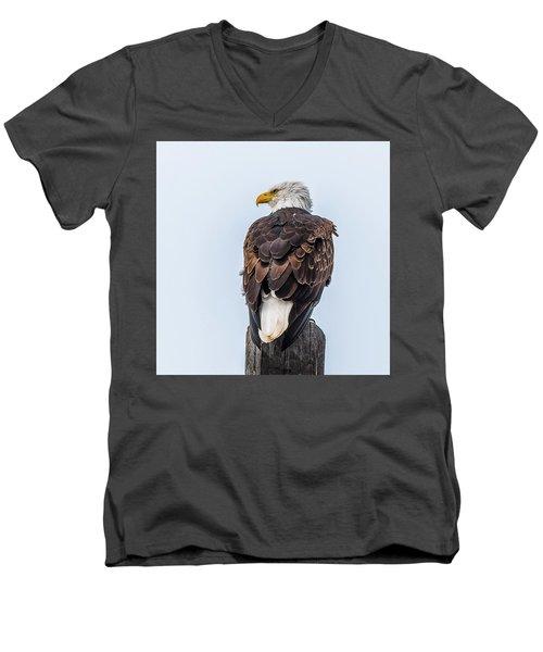 Guarding The Nest Men's V-Neck T-Shirt