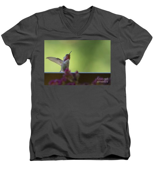 Men's V-Neck T-Shirt featuring the photograph Guarding The Turf by Anne Rodkin