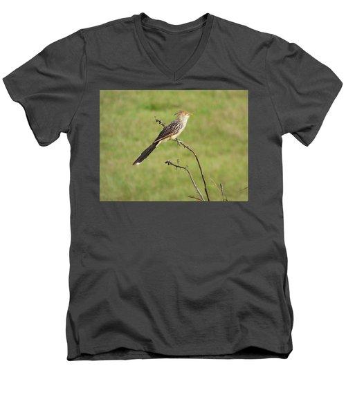 Guira Cuckoo Men's V-Neck T-Shirt