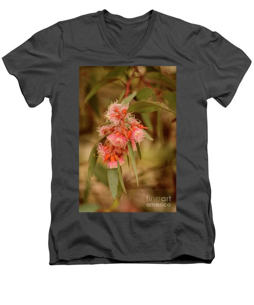 Men's V-Neck T-Shirt featuring the photograph Gum Nuts 2 by Werner Padarin