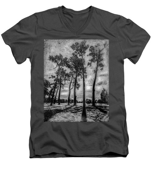 Hagley Park Treescape Men's V-Neck T-Shirt