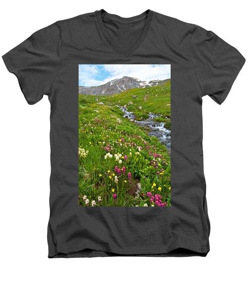 Handie's Peak And Alpine Meadow Men's V-Neck T-Shirt