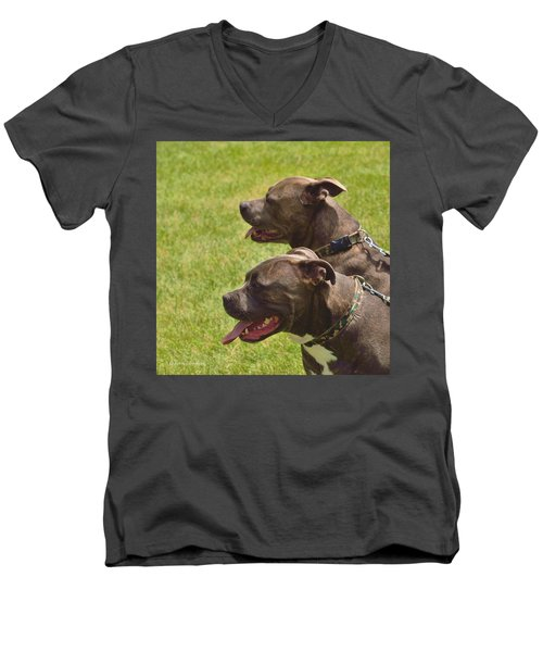 Handsome Pit Bulls Men's V-Neck T-Shirt