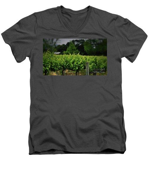 Hanging Out In The Vineyards Men's V-Neck T-Shirt