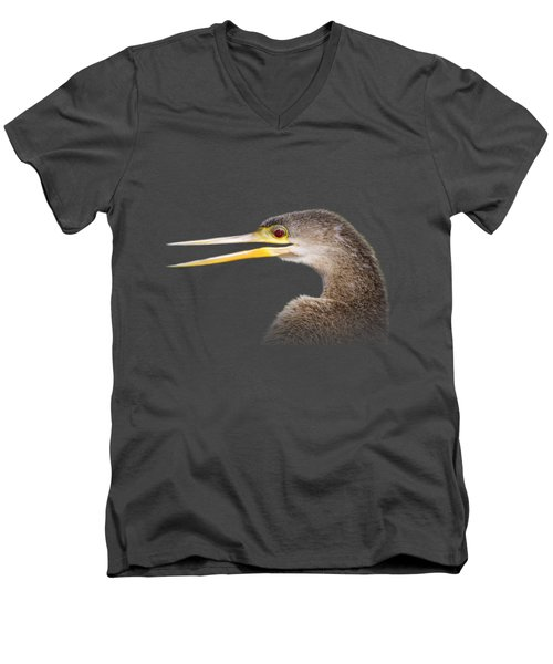 Happy Anhinga Men's V-Neck T-Shirt