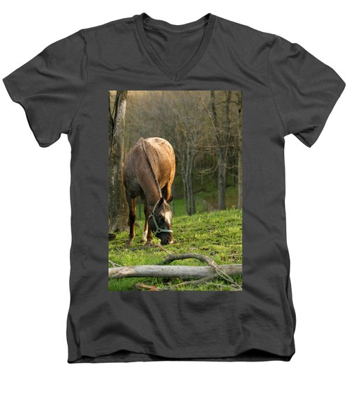 Happy Grazing Men's V-Neck T-Shirt by Angela Rath