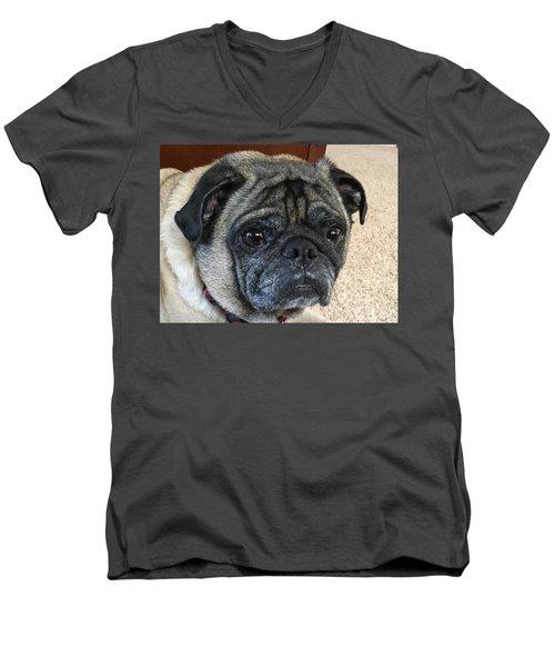 Happy Pug Men's V-Neck T-Shirt