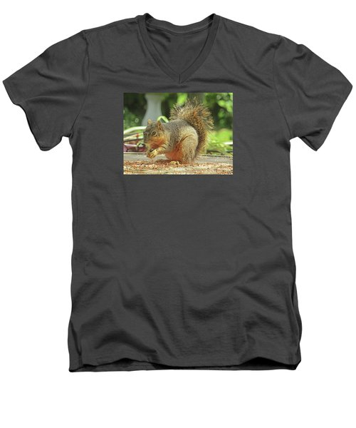Happy Squirrel Men's V-Neck T-Shirt