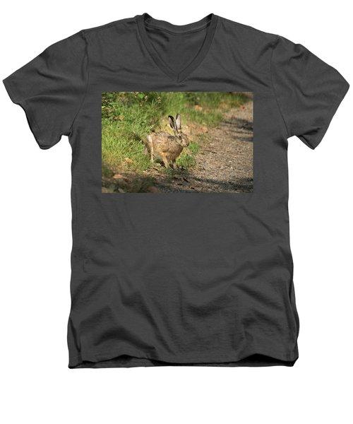 Hare In The Woods Men's V-Neck T-Shirt