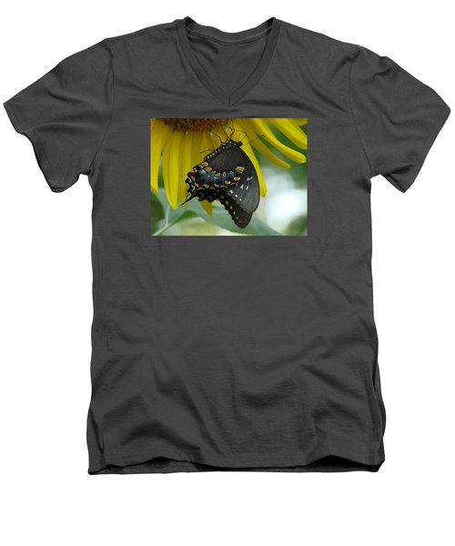 Harmony Men's V-Neck T-Shirt