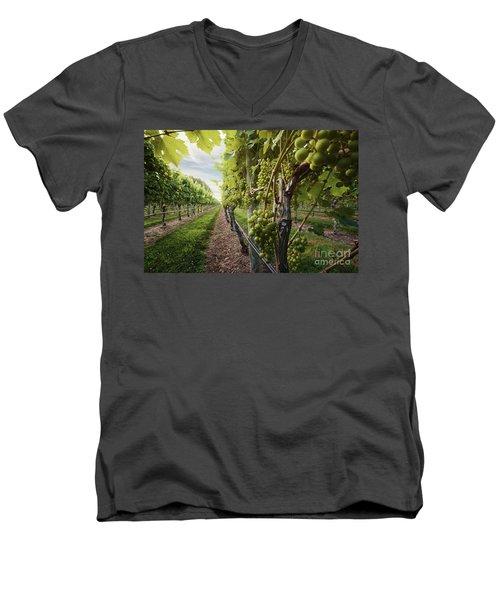 Harmony Vineyard Stony Brook New York Men's V-Neck T-Shirt
