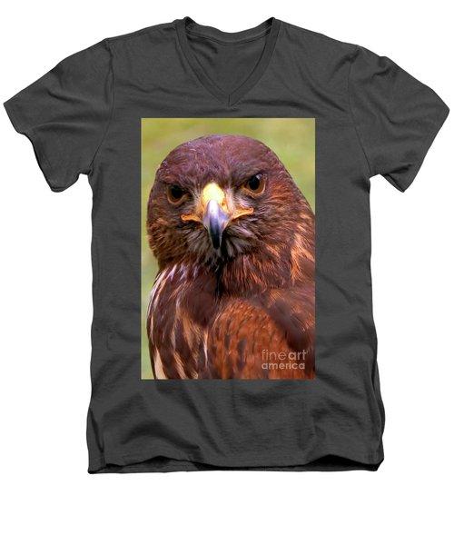 Harris Hawk Portriat Men's V-Neck T-Shirt