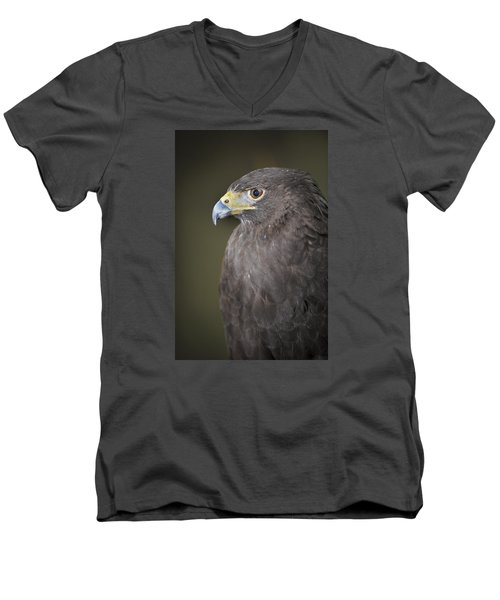 Men's V-Neck T-Shirt featuring the photograph Harris Hawk by Tyson and Kathy Smith