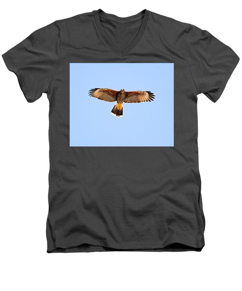 Men's V-Neck T-Shirt featuring the photograph Harris's Hawk H36 by Mark Myhaver