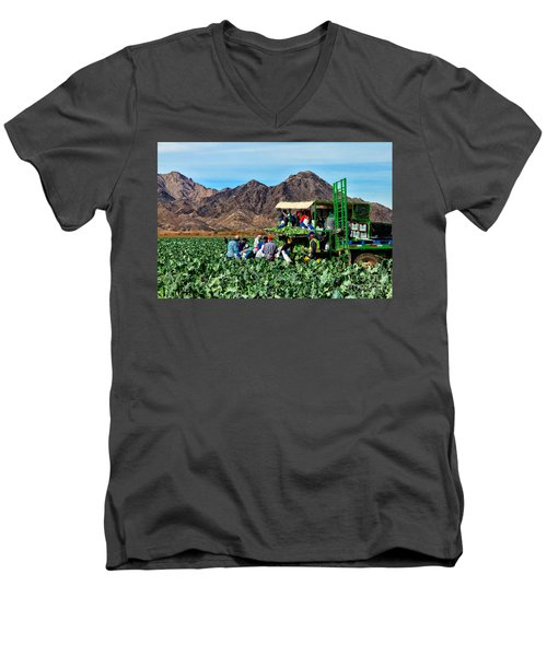 Harvesting Broccoli Men's V-Neck T-Shirt by Robert Bales