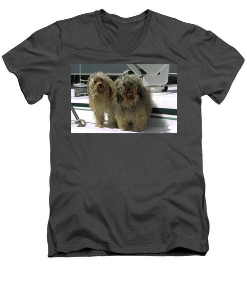 Havanese Dogs Men's V-Neck T-Shirt by Sally Weigand