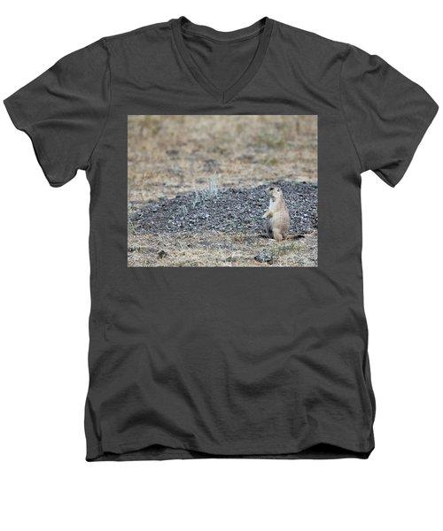 Having A Look Men's V-Neck T-Shirt