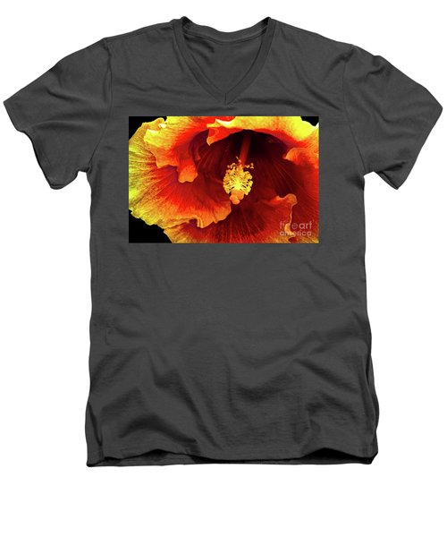 Hawaii Dreamin Men's V-Neck T-Shirt by Deborah Nakano