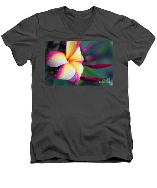 Men's V-Neck T-Shirt featuring the photograph Hawaii Plumeria Flower Jewels by Sharon Mau