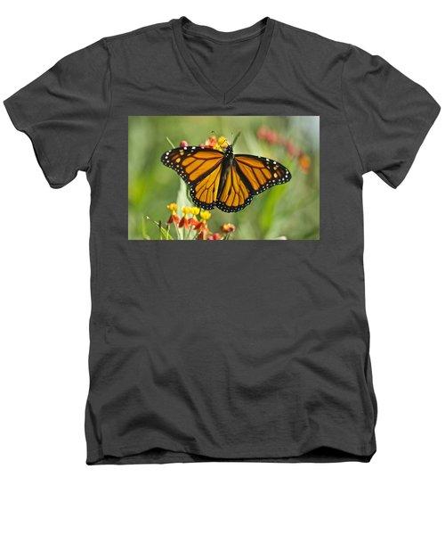 Hawaiian Monarch 3 Men's V-Neck T-Shirt