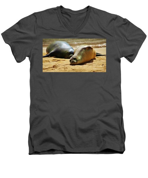 Hawaiian Monk Seals Men's V-Neck T-Shirt by Craig Wood