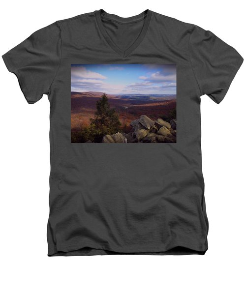 Hawk Mountain Sanctuary Men's V-Neck T-Shirt